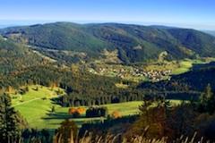 Les Schwarzwald