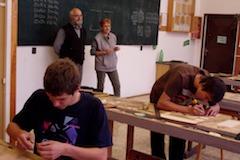 Skola vola
