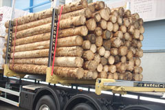 EAD odvoz gulatiny