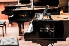 Petrof klaviry