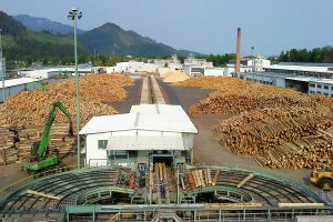 Tri otázky o drevospracujúcom sektore v Slovenskej republike